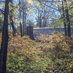 DSC 1094 150x150 Fall Foliage