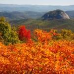iStock 000008133077XSmall1 150x150 Fall Foliage