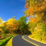 iStock 000013035557XSmall 150x150 Fall Foliage