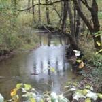 stream 150x150 Cades Cove