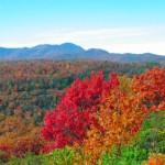 iStock 000011187931XSmall 150x150 Fall Foliage