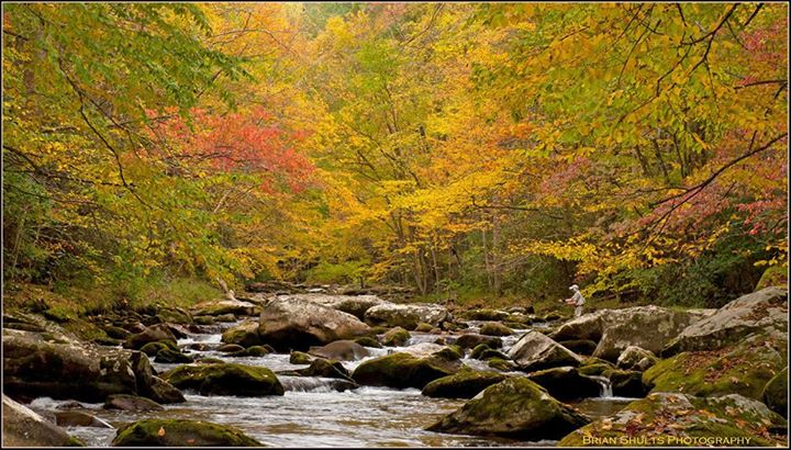 Great Smoky Mountains Guide