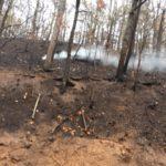 fire2 e1480558542448 150x150 Gatlinburg Fire Damage Reports